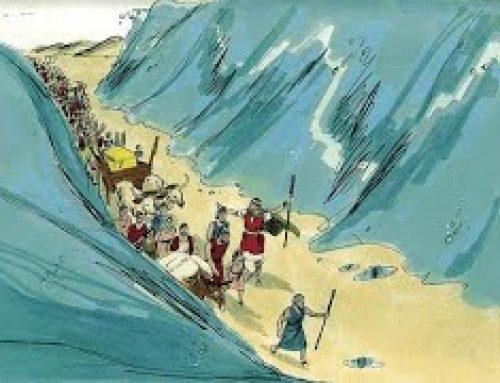 Étincelle de la Paracha : Béchallah – Ouverture de la Mer Rouge